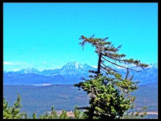Breathtaking Views From This Custom Cabin! Hunting, Cle Elum