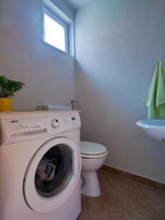 toilet with washing machine