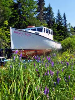 Lonely Planet calls Machiasport the 'real Downeast.'