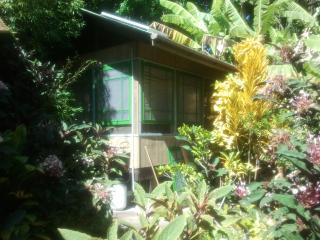 Banana Patch Cottage, a tiny gem!