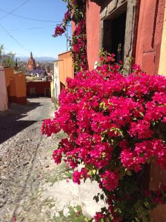 Oldest street in San Miguel; lovely short walk to Jardin