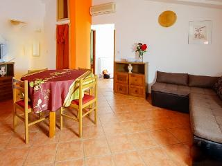Apartman Elba in green of olive