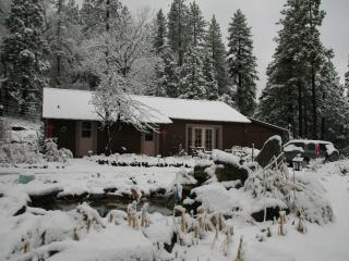 Soothing Solitude & Views in Cozy Cabin & Cottage on 9 Acres, Near Lake, Bass Lake