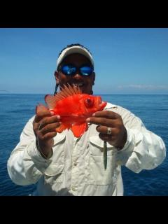 Osa Ron's full & half day fishing 30 min drive away
