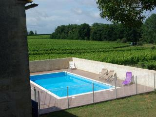7 bedroom Villa in St Quentin De Caplong, Aquitaine, France : ref 1718798