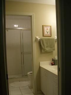 Master Bedroom En-Suite Shower