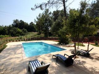 4 bedroom Villa in Les Arcs, Provence, France : ref 1718448