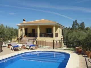 Luxurious holiday home near Málaga and Marbella, Alhaurin el Grande