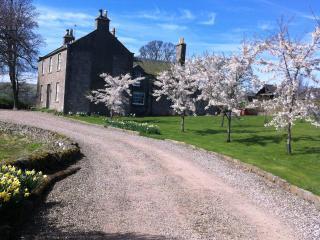 Pitermo Farmhouse. Beautiful setting. Hot Tub., Dundee