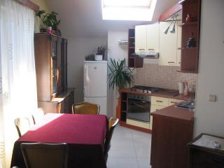 Comfortable apartment Prunus close to the old city