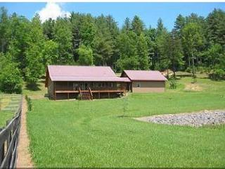 4/2 pet-friendly cabin in North Georgia mountains!, Blairsville