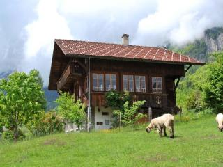 Chalet with lake and mountain view, garden and sauna