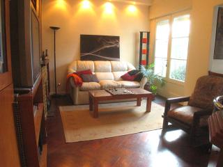B158 Spacious and cozy apartment with cheminee in Belgrano buenos Aires vacation