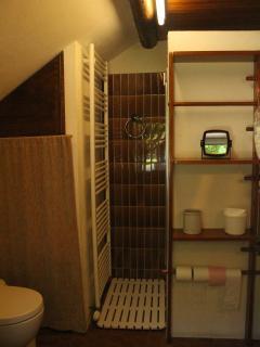 la salle de bains du rez de chaussee avec wc non séparé