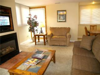 Reasonably Priced Town Of Telluride 2 Bedroom Condo - TL405