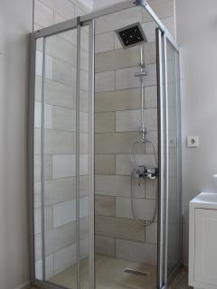 Bathroom with shower downstairs