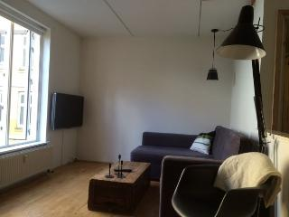 Lovely little Copenhagen apartment at Noerrebro, Copenhague