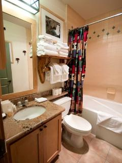 Bathroom- Full Shower & Bath Tub