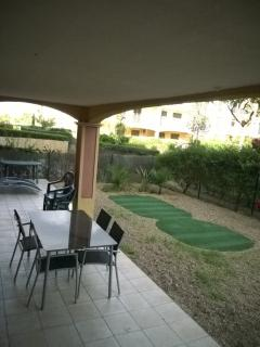 Covered Terrace in private garden, palmtree oasis growing
