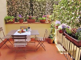 LOVELY TERRACE, ACROSS THE STREET FROM ACCADEMIA!, Florence
