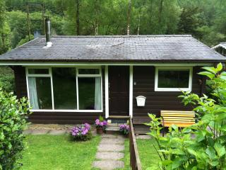 1st in a row of only 6 cabins. Surrounded by woodland. A path to the river runs behind it.