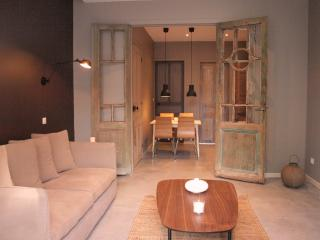 Appartement 1 chambre avec terrasse, La Madeleine