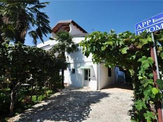 24654-Apartment Novigrad