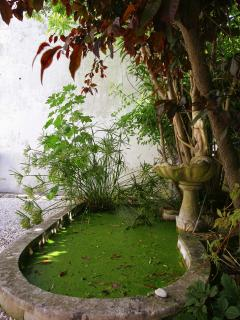 Pond feature in courtyard