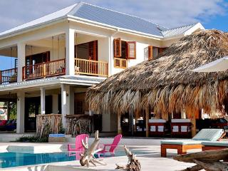 Ideal for Families & Groups, Beachfront, Cook & Staff Included, Private Pool, Water Toys, Treasure Beach