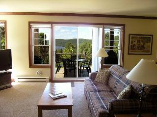 Mont Tremblant Mountain Side Condo