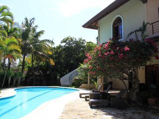 Luxury Beachfront Villa with Private Pool, Cabarete