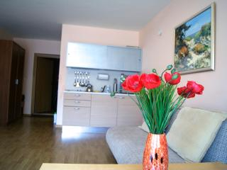 Apartment 80m from the sea beach, Palanga