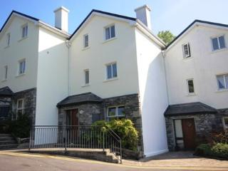 No 7 John Darcy Court - 3 bed townhouse, parking,large patio area, town centre on your doorstep, Clifden