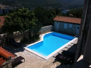 Luxury Villa with swimming pool in Zaton