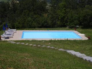 Large pool 6x12 metres with plenty of sun loungers and umbrellas