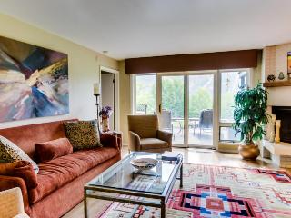 Cozy, warm condo with amazing mountain and golf course views, Ketchum