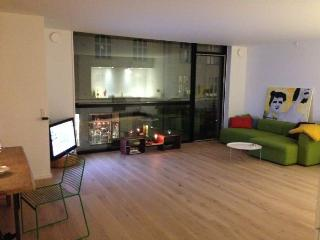 New exclusive Copenhagen apartment at Frederiksberg, Copenhague