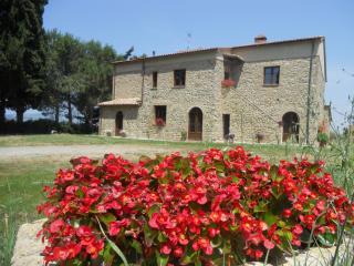 L'Antica Quercia - Gladiolo, Pomarance