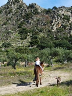Donkey riding on  the finca