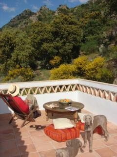 Fantastic roof terrace with view of the sierra