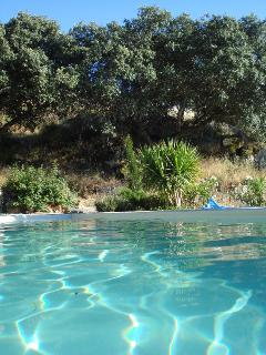 Dive into the super pool surrounded by the peaceful sierra