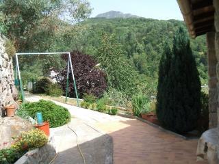 Roquebilliere/Belvedere, Castagniers