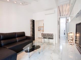 Top end apt in Plaza Mayor