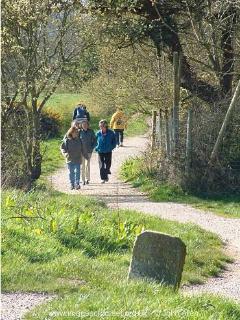 Studland walk
