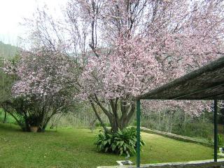 Casa en Pleno Parque Natural Sierra de Aracena