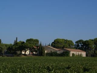 Gite dans domaine viticole, Capestang