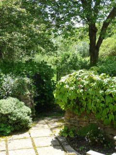 Secluded private garden