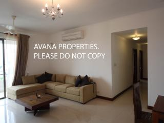 Colombo City 3BR Apt near Odel