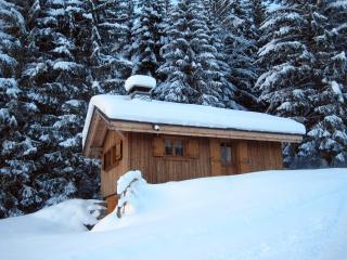 Chalet individuel  tout confort en montagne Morzine-Avoriaz