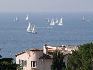 View of the Regatta from the apartment